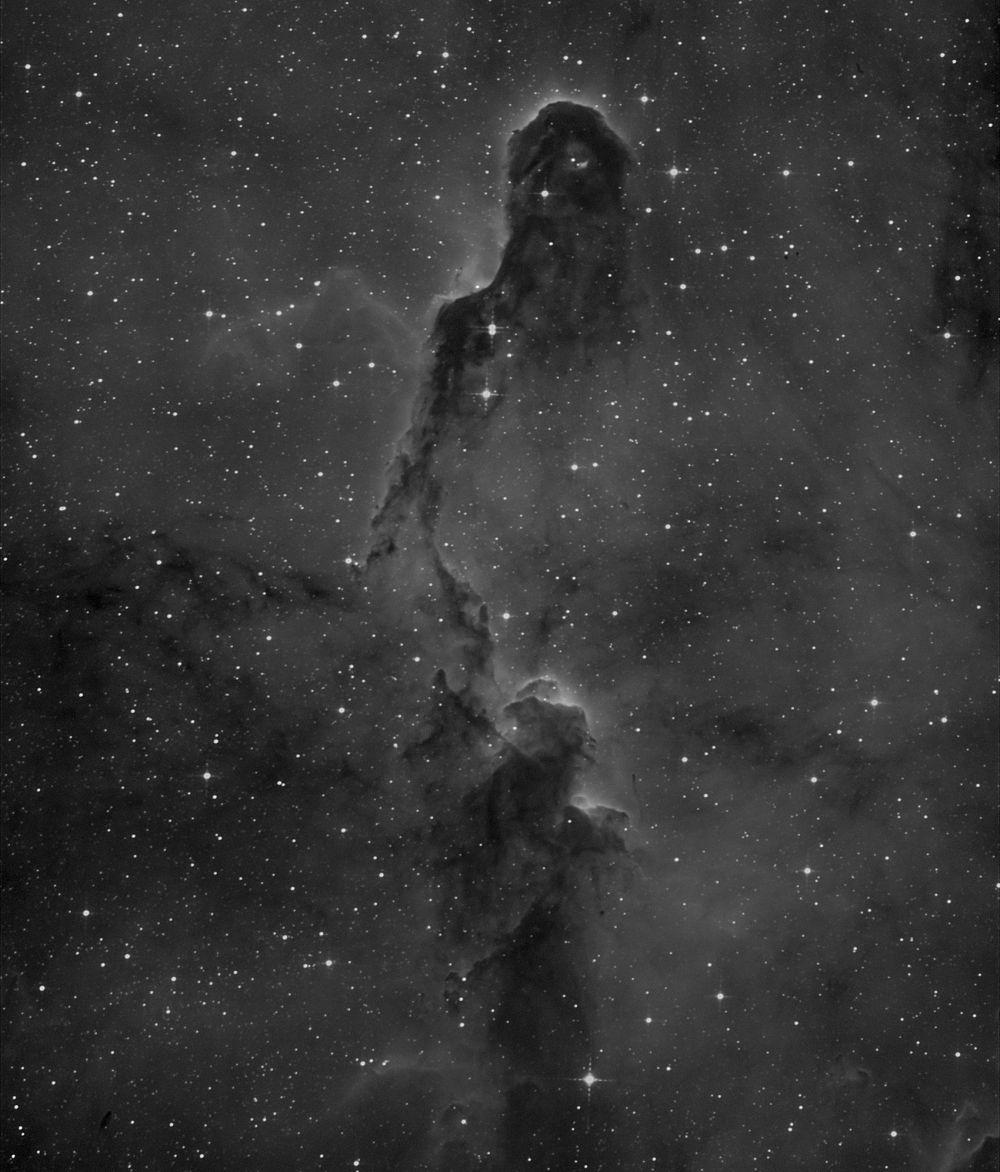 IC 1396, Elephant's Trunk Nebula