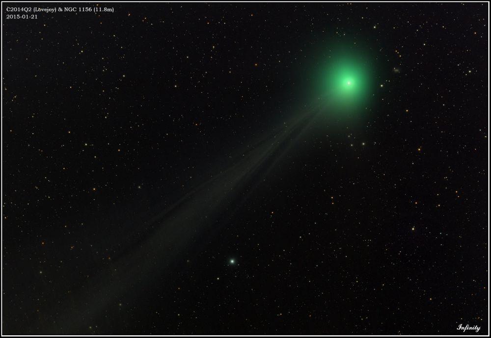 C2014Q2 (Lovejoy) & NGC1156
