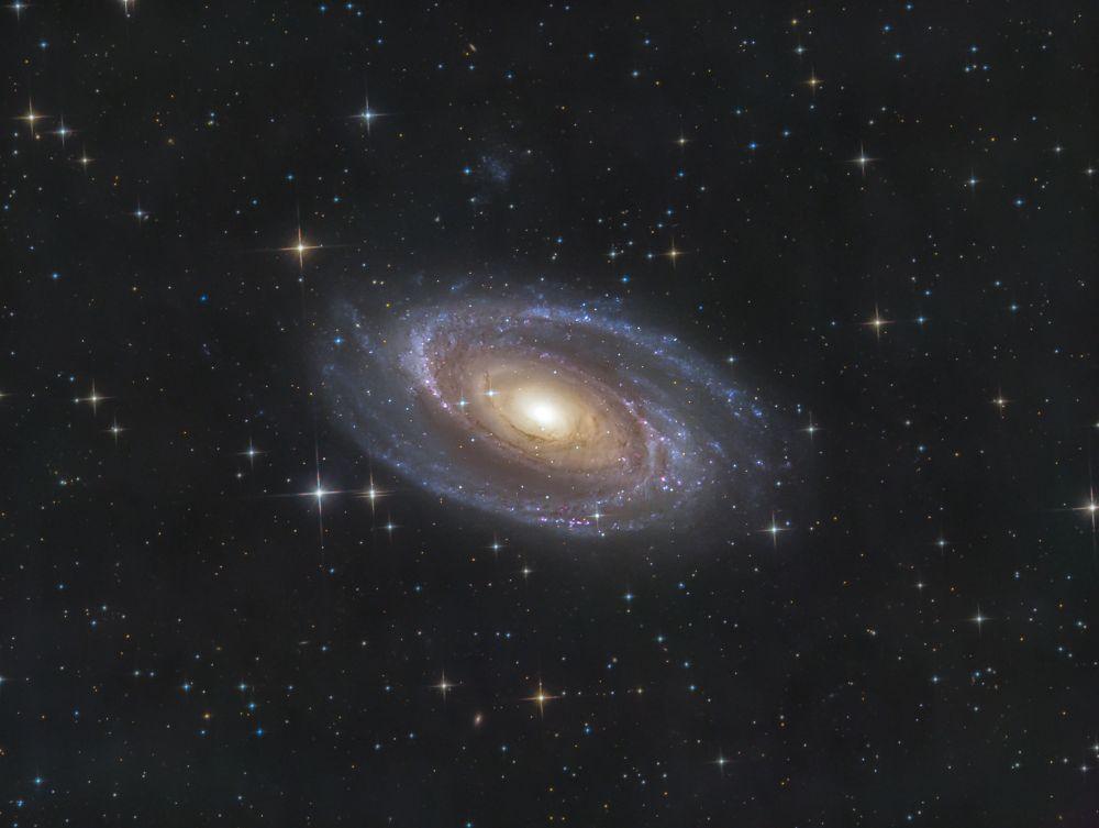 M81 & UGC 5336