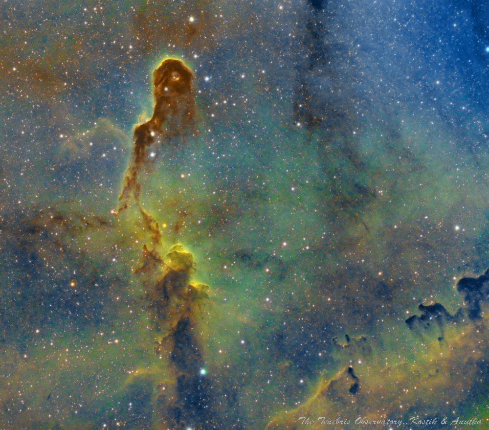 The IC1396 nebula in Cepheus - астрофотография