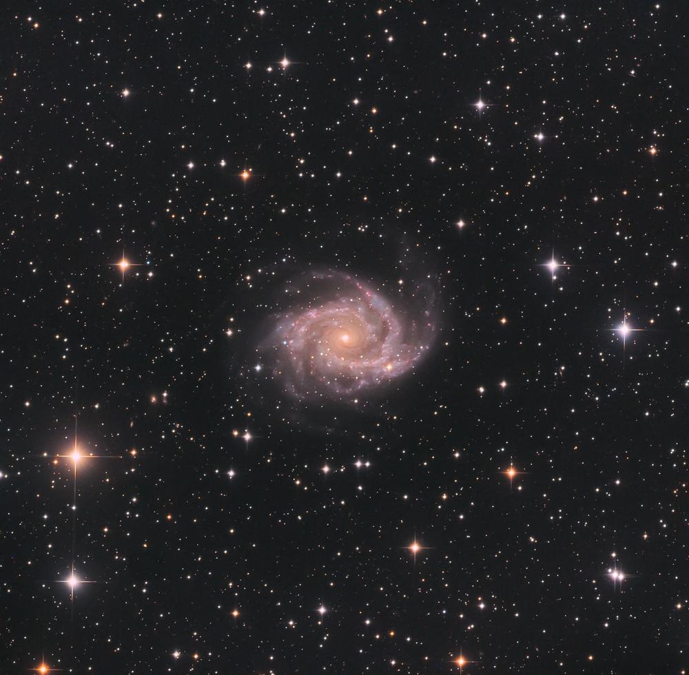 Галактика NGC 2997 в созвездии Насос