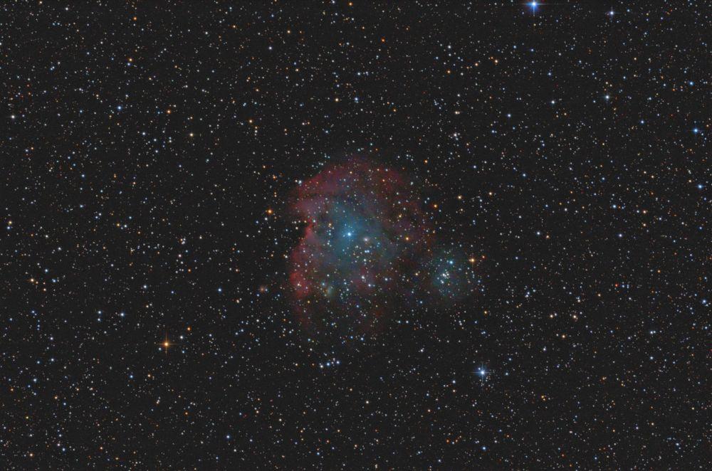 Monkey Head Nebula - NGC2174, NGC2175