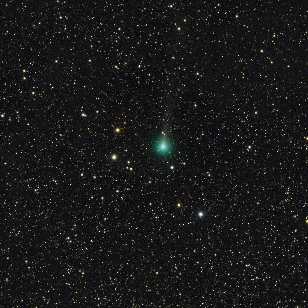 C/2019 Y1 (ATLAS) 23.04.2020