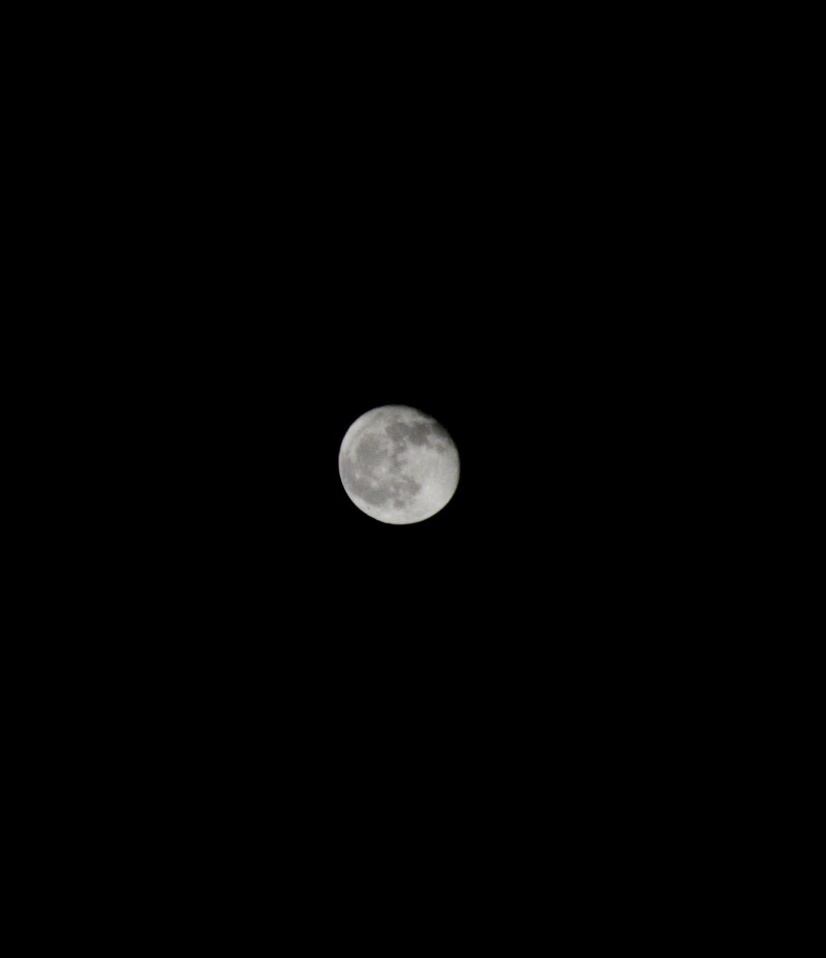 Луна 14 ноября 2019 года.