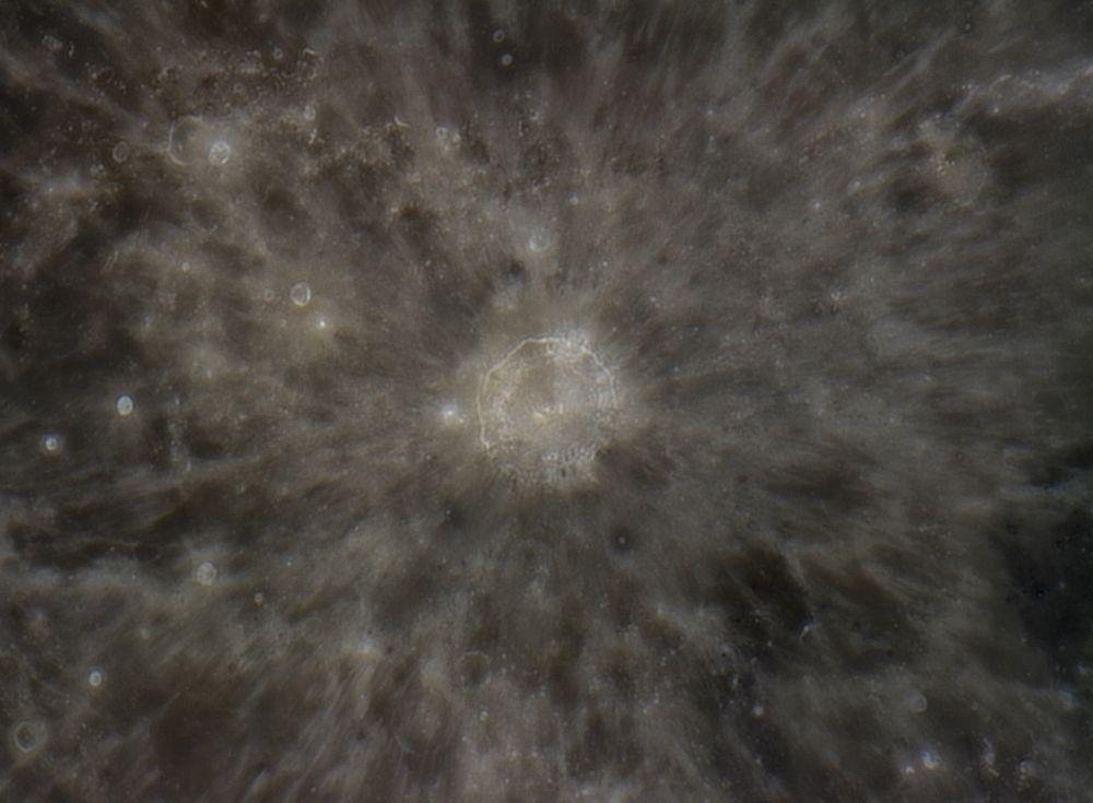 Copernicus, 8 oct 2014, 23:40