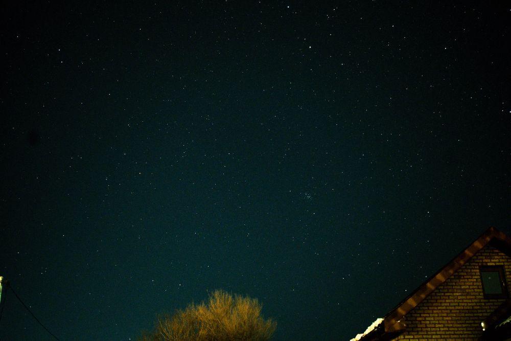 Созвездия Рака, Малого Пса, Близнецов, Рыси, Льва, Малого Льва, а также Рассеянное звёздное скопление Ясли и другие.