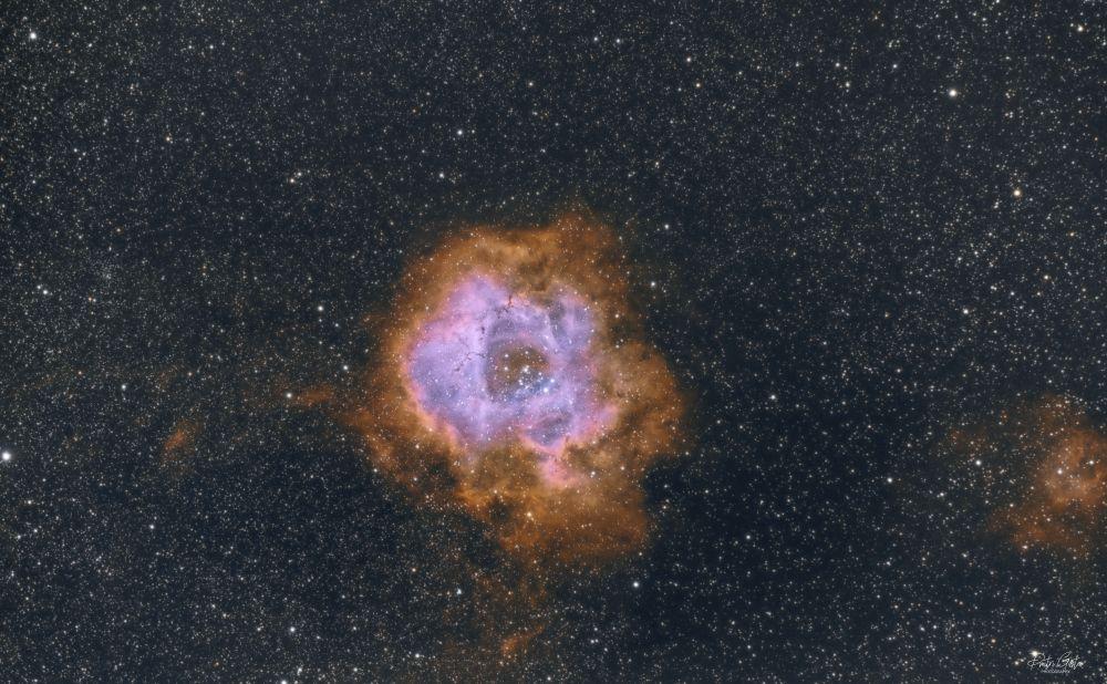 NGC 2237 Rosette nebula SHO faked with Pixinsight