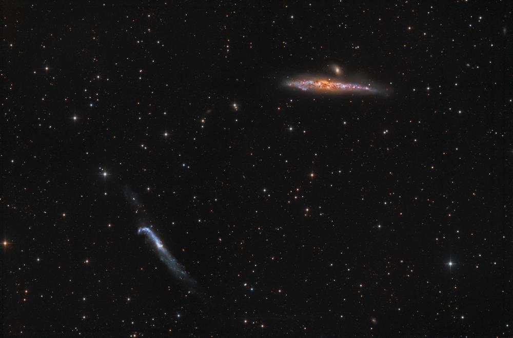 NGC4631(Whale) & NGC4656(Crowbar)