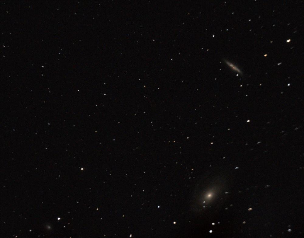M81.M82