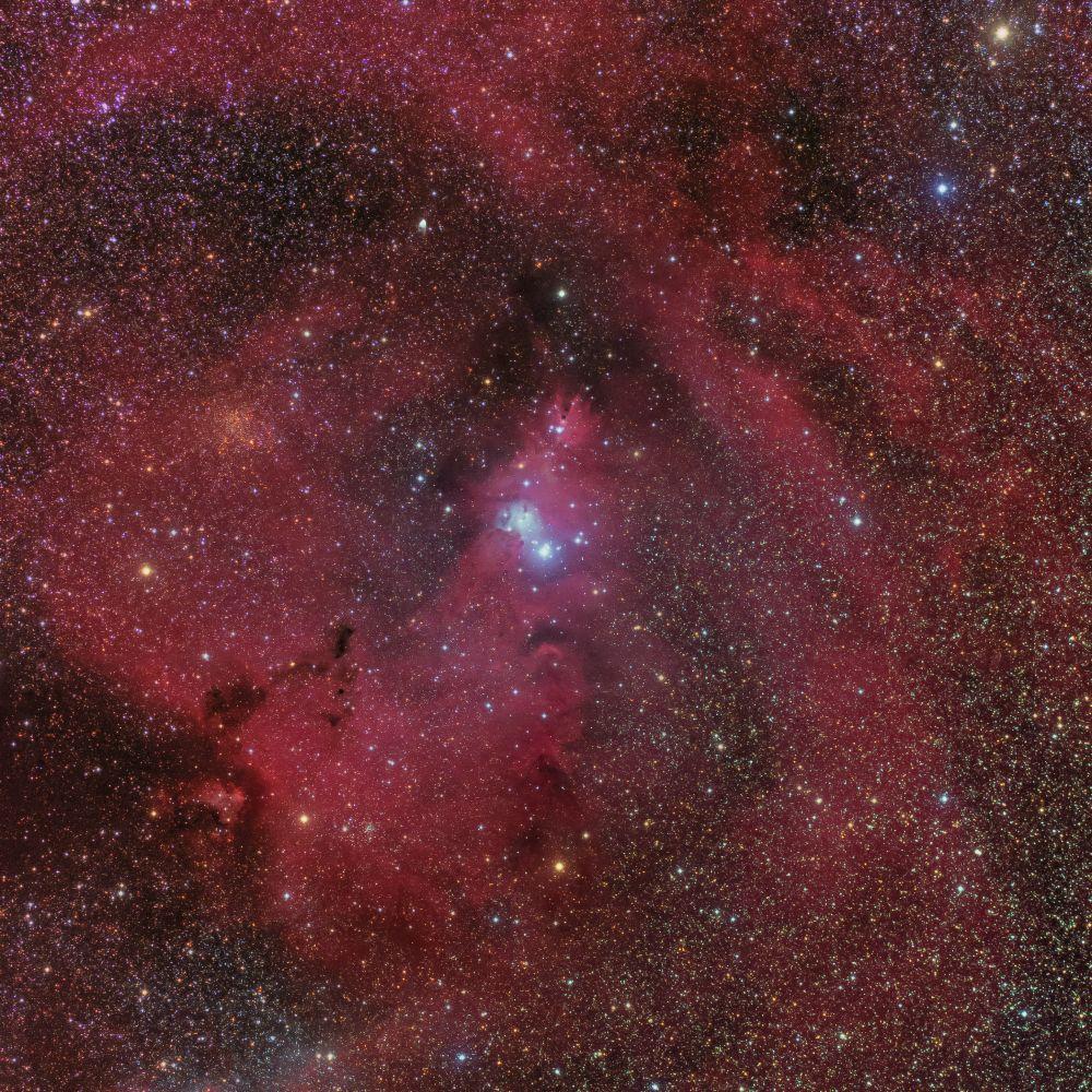 Christmas Tree Cluster (NGC 2264, Cone Nebula)