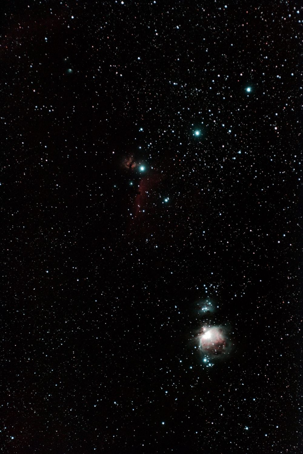 Nebulas in Orion - M42, M43, Horse Nebula, M78.