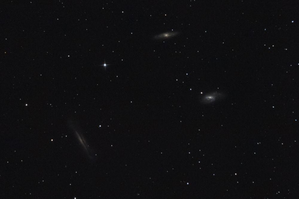 LEO TRIPLET M65 M66 NGC 3628
