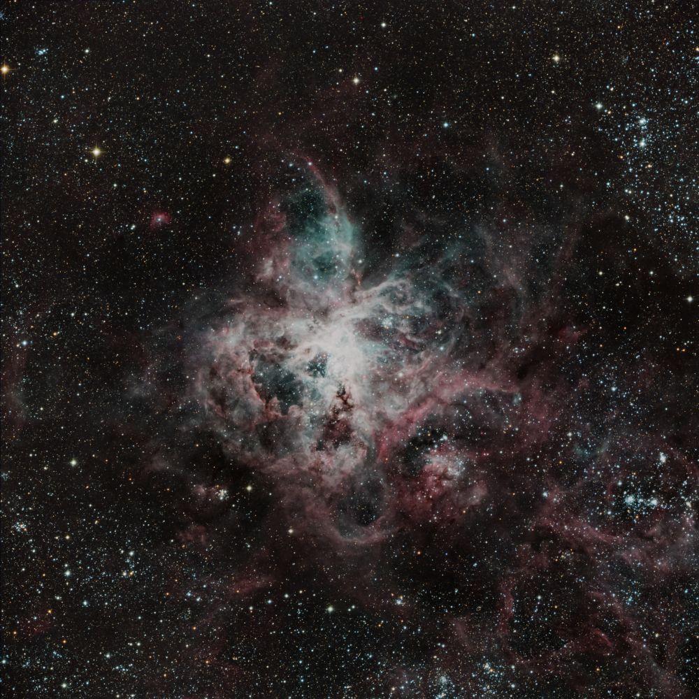 NGC 2070 (Туманность Тарантул)
