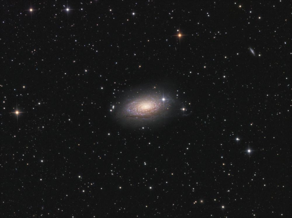 M 63 LRGB