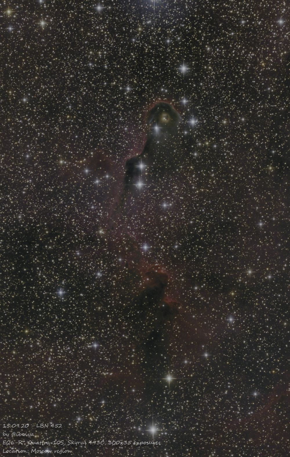 LBN 452 Elephant Trunk nebula