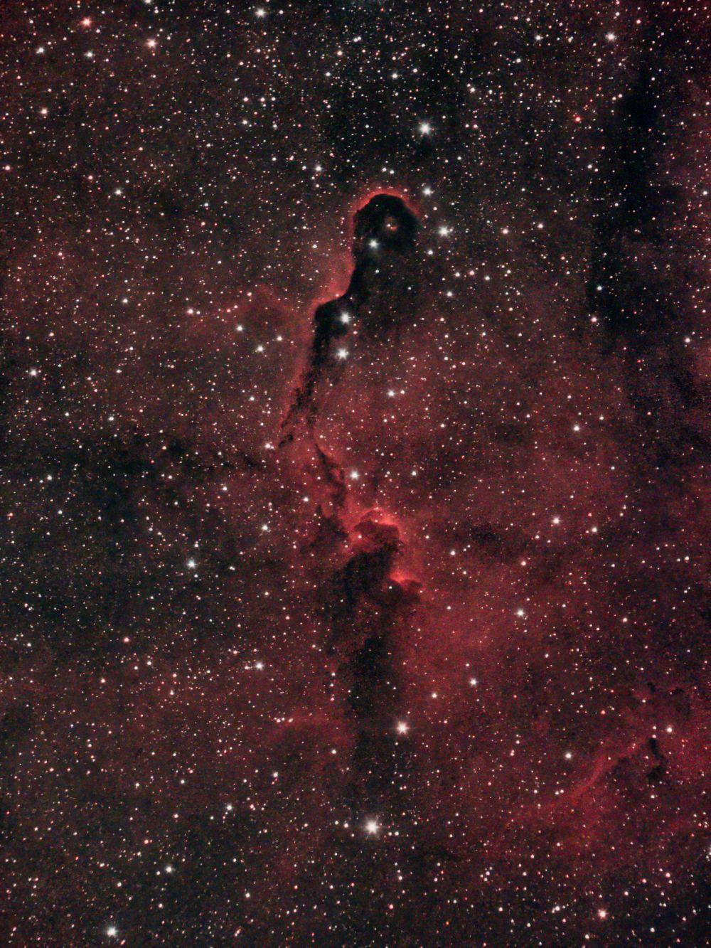 IC1396 Хобот слона