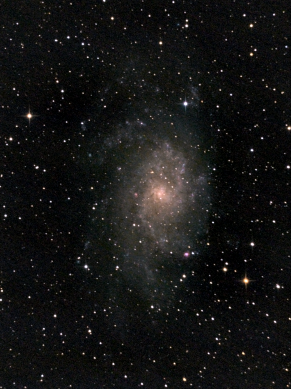 Галактика М33 в Треугольнике. 04,09,2021 и 11.09.2021