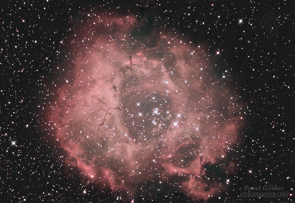 """Эмиссионная туманность NGC 2237 """"Розетка""""."""