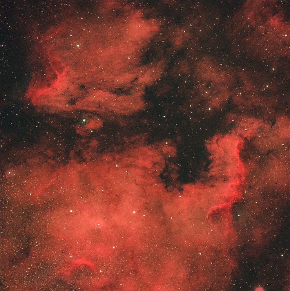 Туманности Северная Америка (NGC 7000) и Пеликан (IC 5070 и IC 5067)