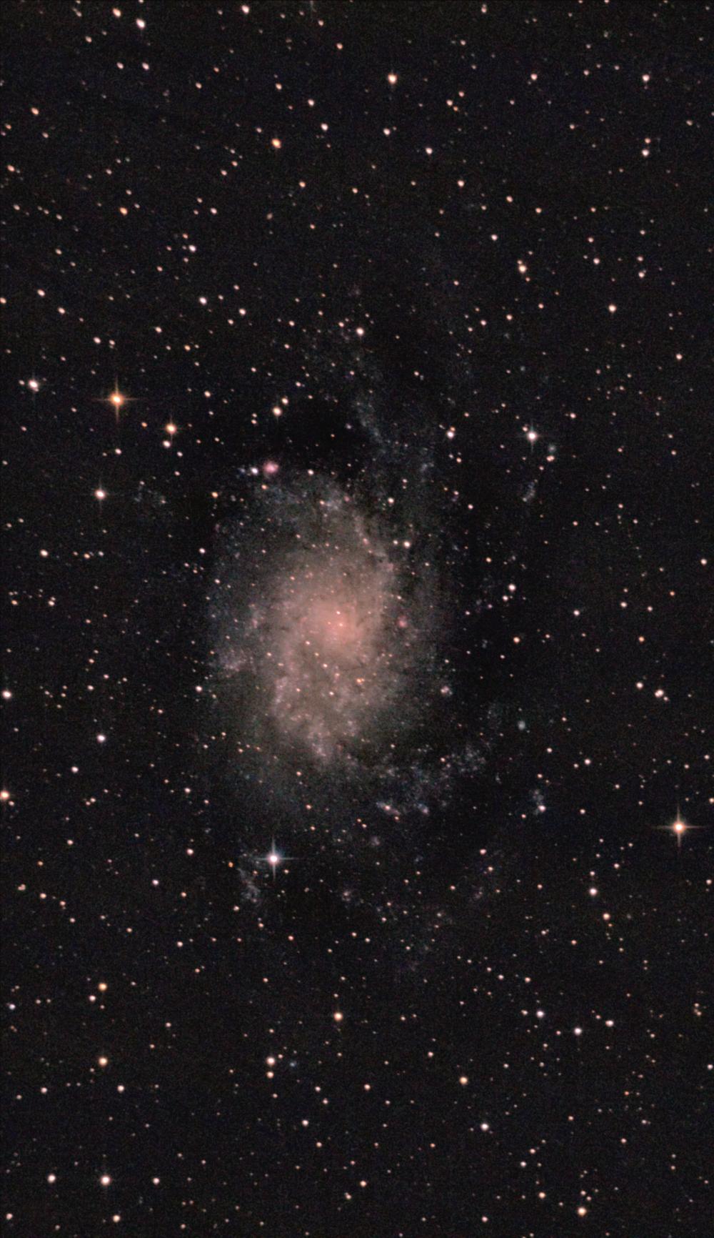 Галактика М33 в Треугольнике. 04,09,2021