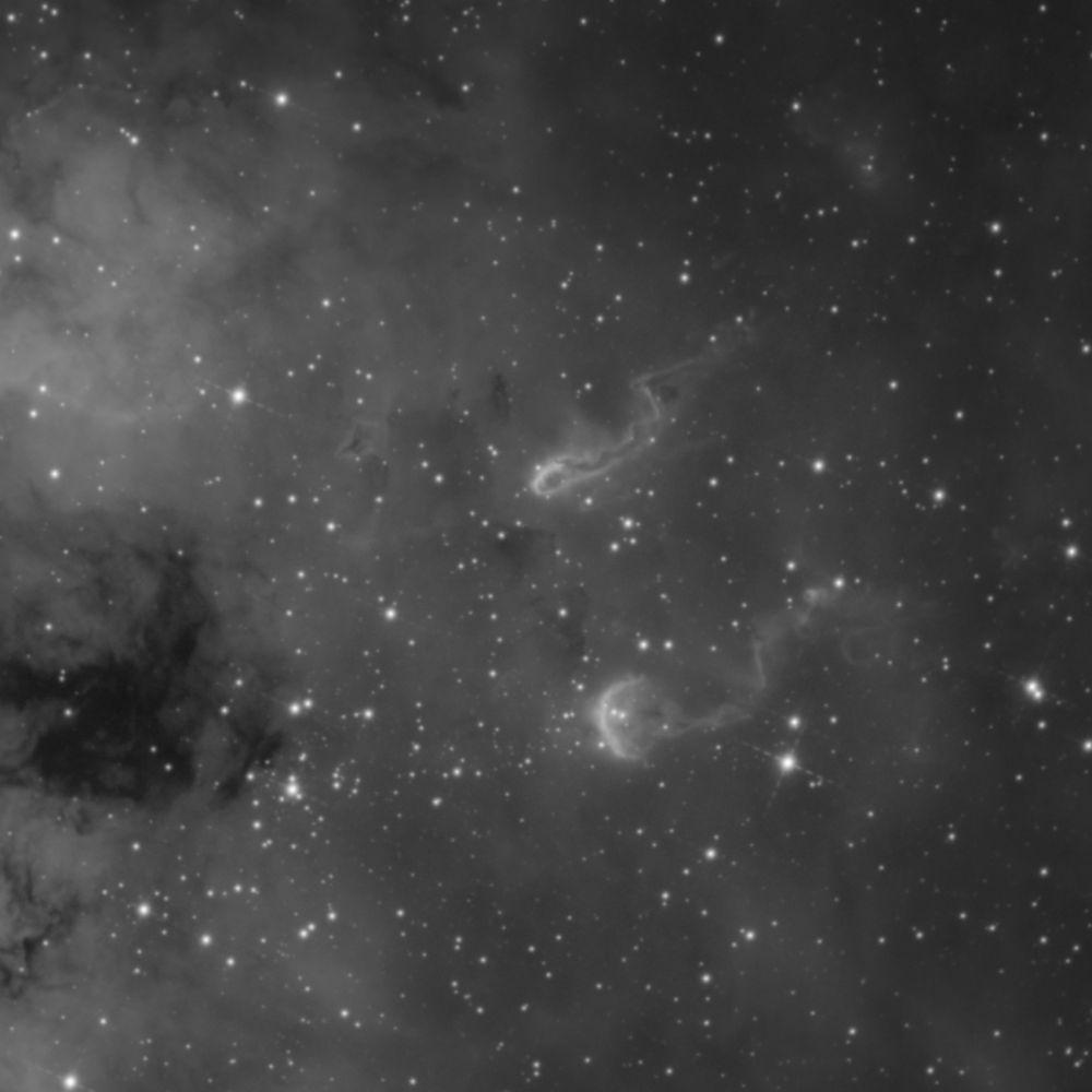 Tadpoles nebula