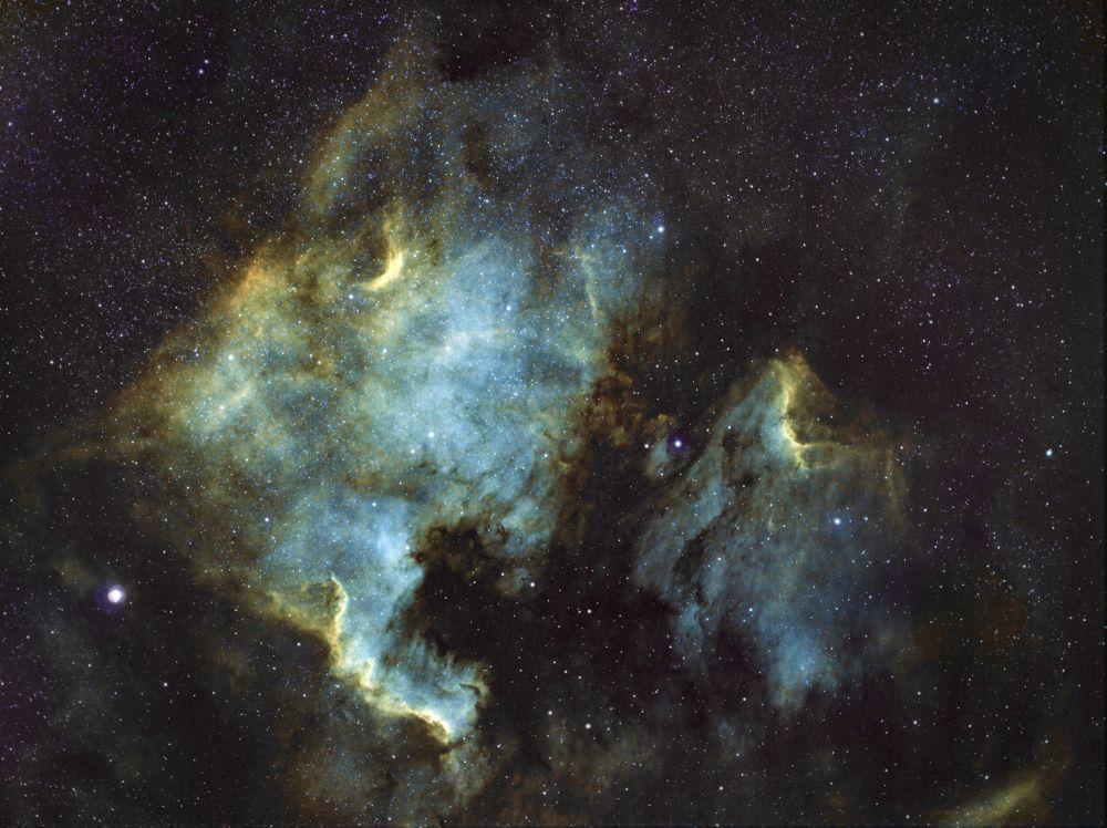 Туманности Северная Америка NGC 7000 и Пеликан IC 5070