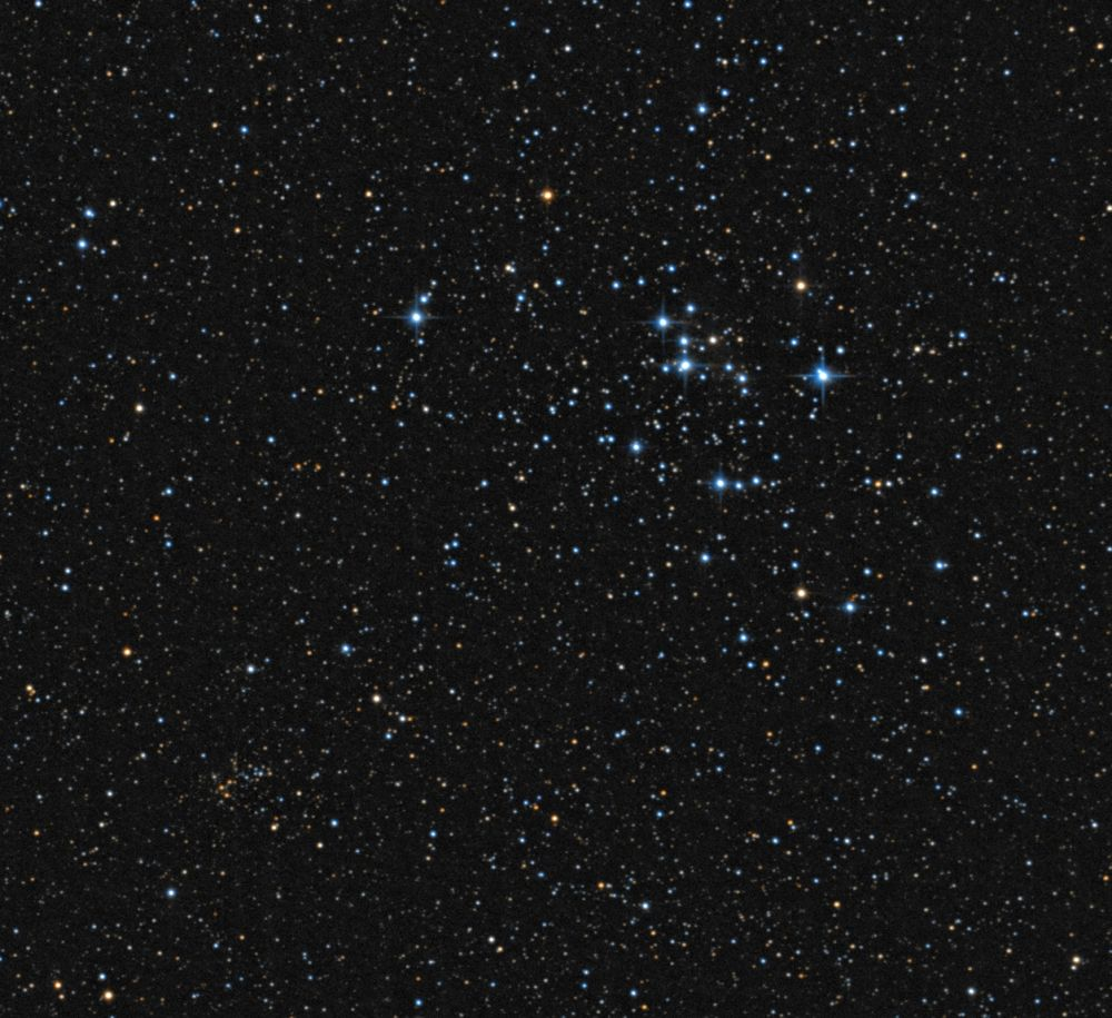 M47 & NGC2425