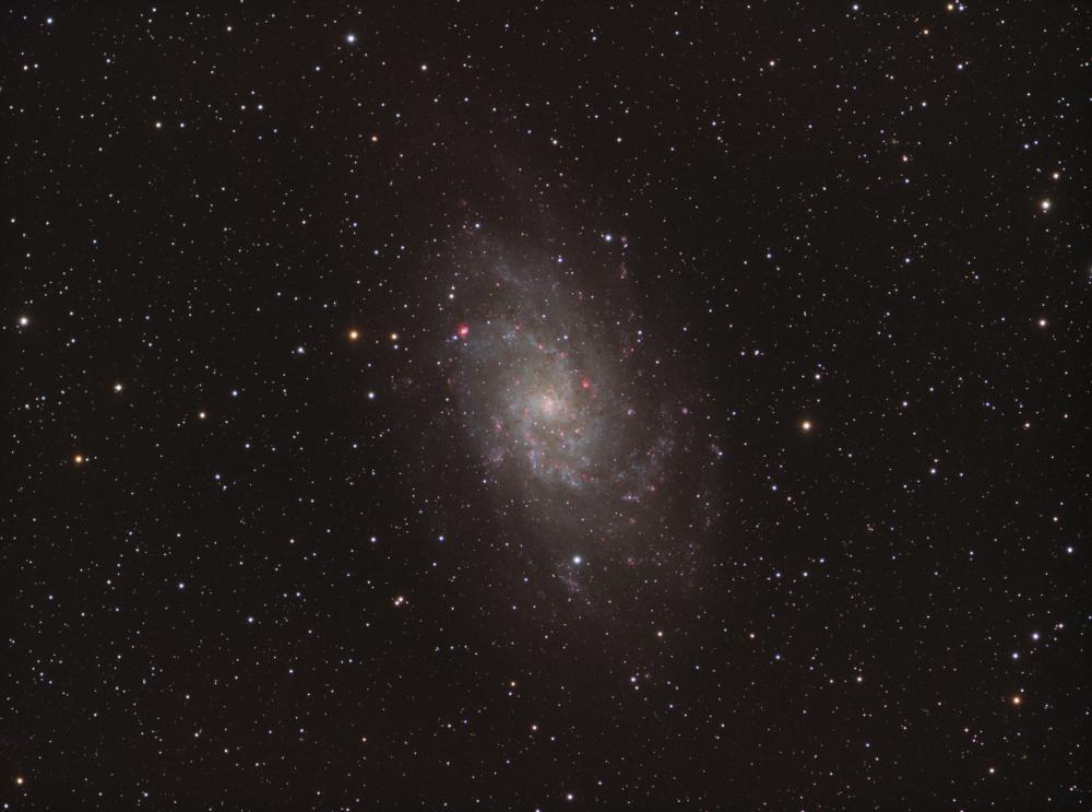 M 33 Triangulum Galaxy HaRGB