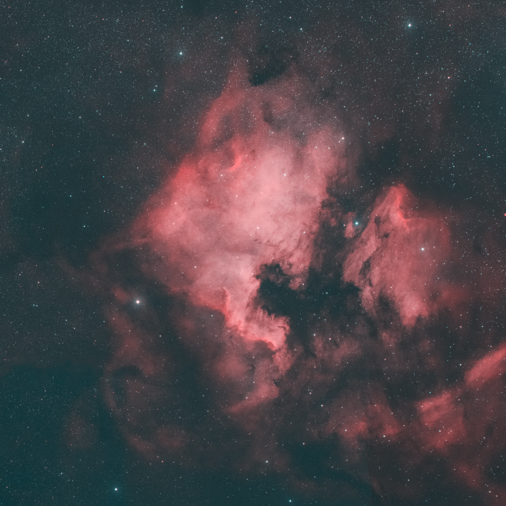 The North America Nebula and the Pelican Nebula in the constellation Cygnus