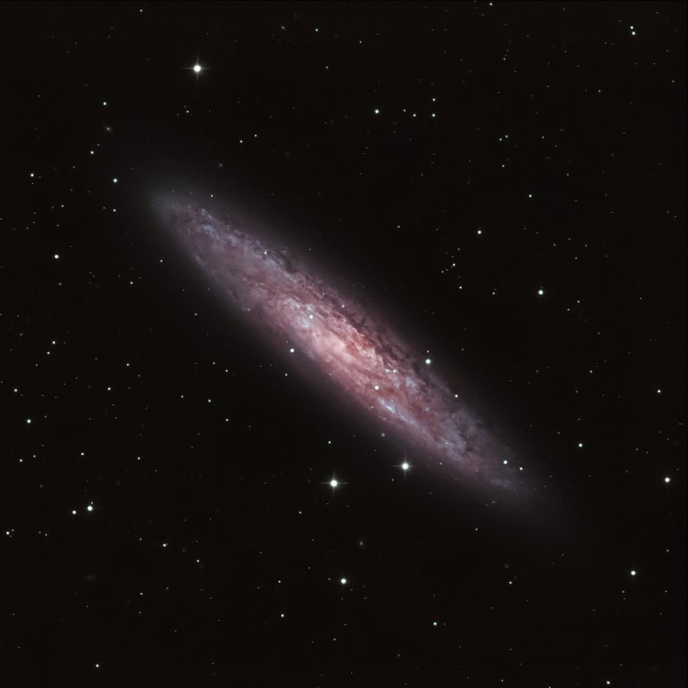 NGC 253 - Галактика Скульптора (Серебряная Монета)
