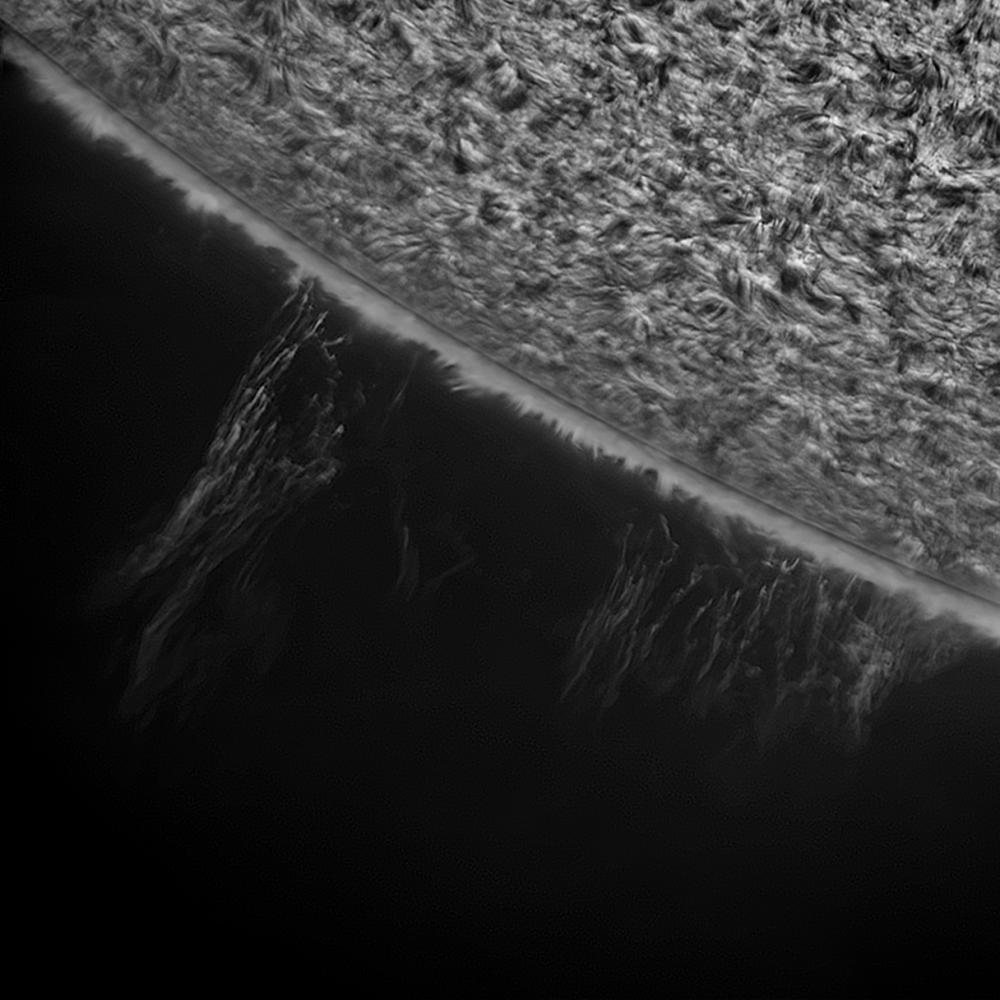 2019.08.24 Sun H-Alpha south prominence