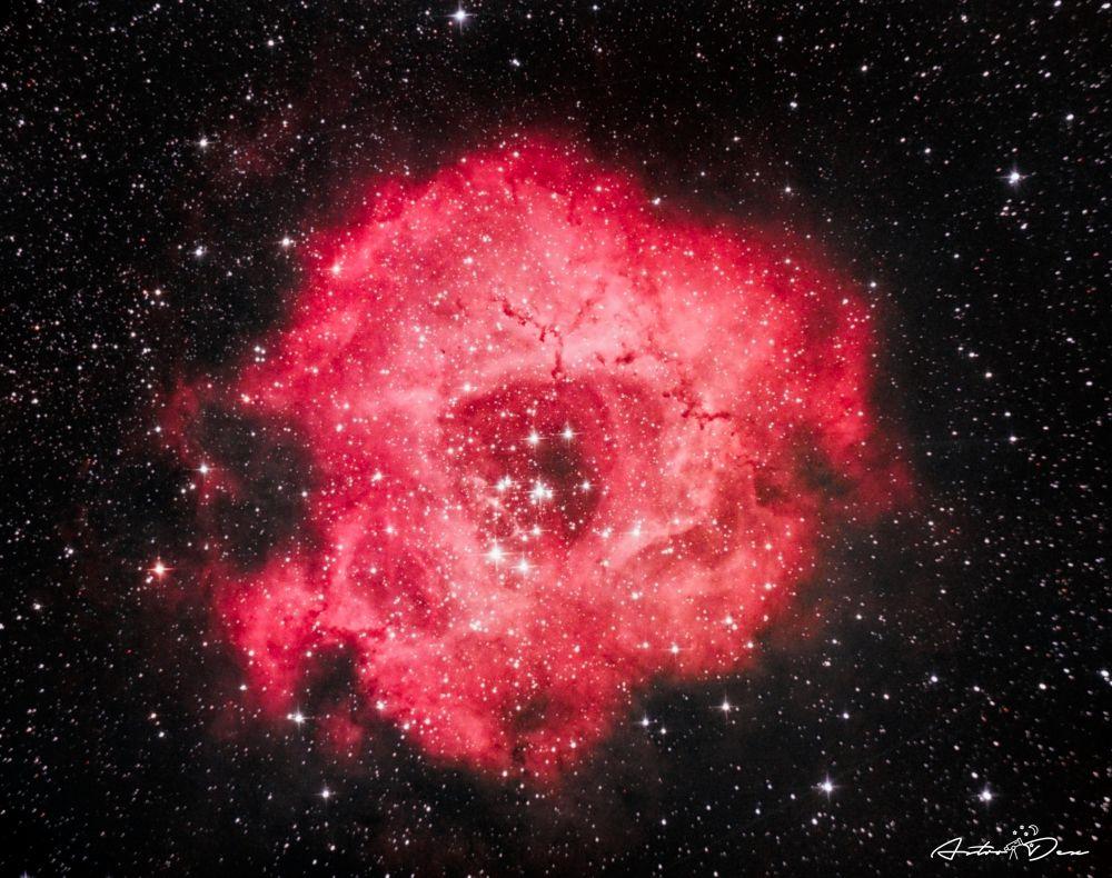 NGC 2237 Rosette nebula