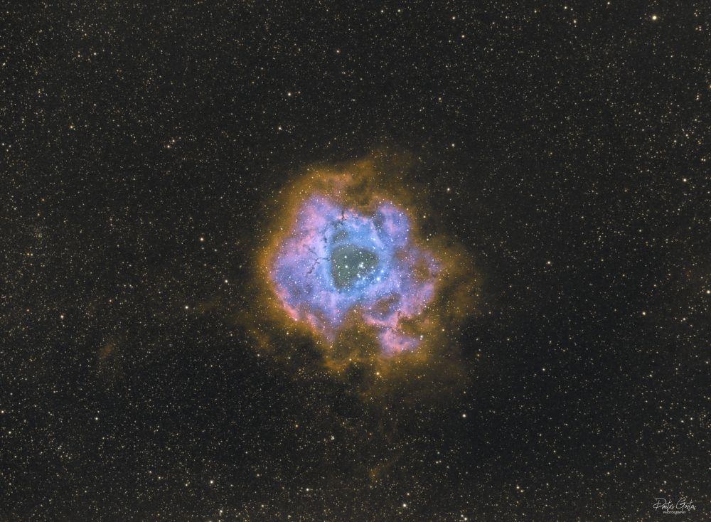 NGC 2237 Rosette nebula SHO faked from dual narrowband filter