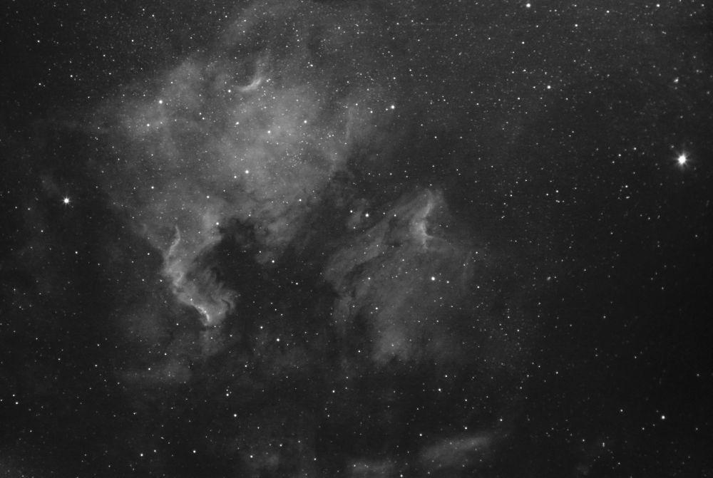 NGC 7000 and IC 5070