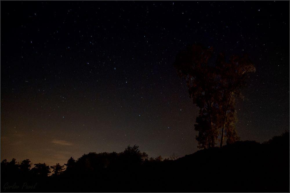 Созвездие Большой Медведицы над тёмным небом Абхазии