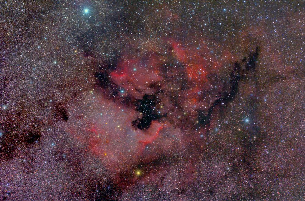 NGC 7000 (Северная Америка), IC 5070 (Пеликан)