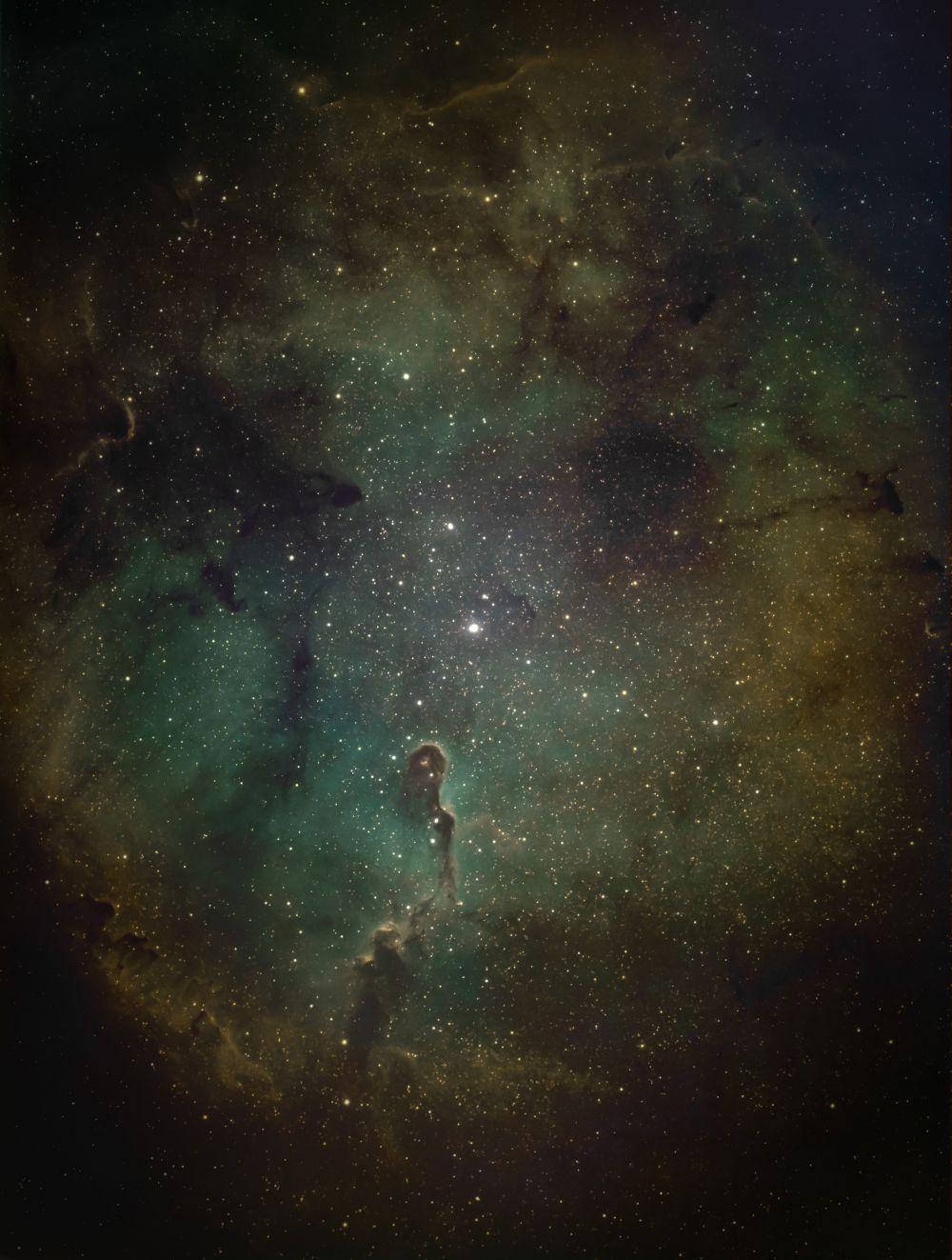 Слоновый хобот IC 1396