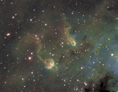 IC 410 (Tadpoles crop) - астрофотография