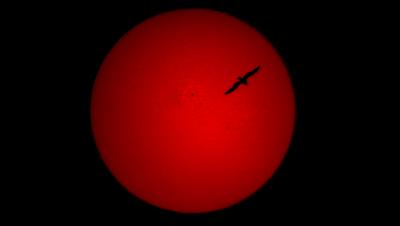 Солнце в H-Alpha 12.05.2019 - астрофотография