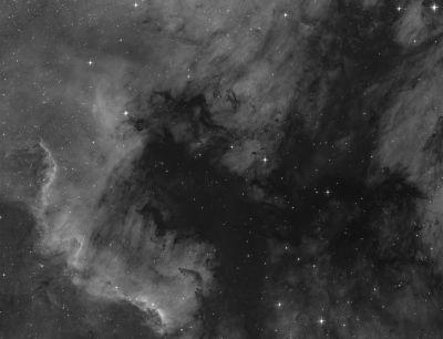 NGC 7000 - астрофотография