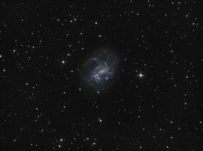 NGC4395/PGC40596 (Galaxy) in CVn LRGB - астрофотография