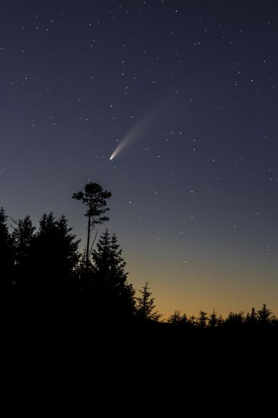 COMET C/2020 F3 NEOWISE over Macclesfield Forest - астрофотография