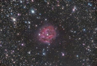 IC5146 Cocoon Nebula - астрофотография