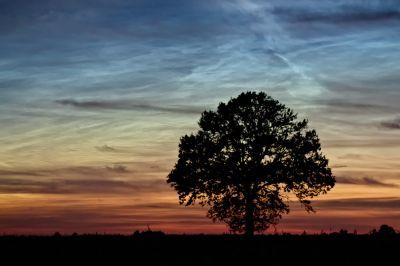 Nuctilucent clouds - астрофотография