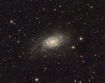 NGC 2403 - астрофотография