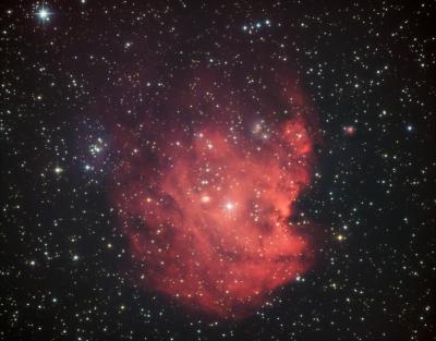NGC 2174 Monkey Head Nebula HaLRGB - астрофотография