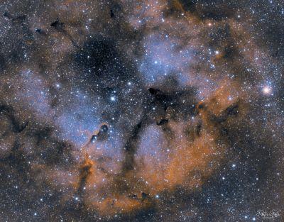 IC1396, Elephant's trunk nebula - астрофотография