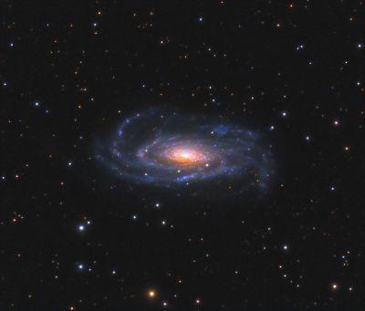 NGC 5033 (UGC 8307, MCG 6-29-62, ZWG 189.43, IRAS13111+3651, PGC 45948) - астрофотография