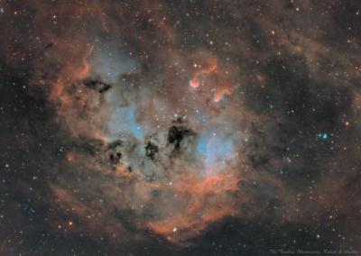 IC410 Головастики - астрофотография
