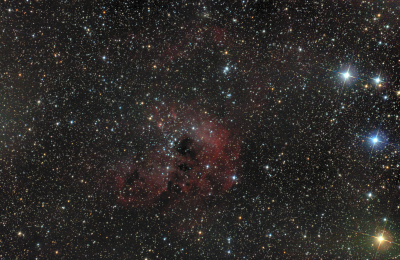 IC 410 Головастики - астрофотография